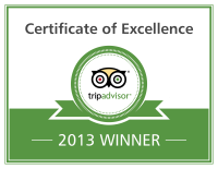 Excellence-Badge_2013